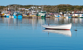 twillingate harbour